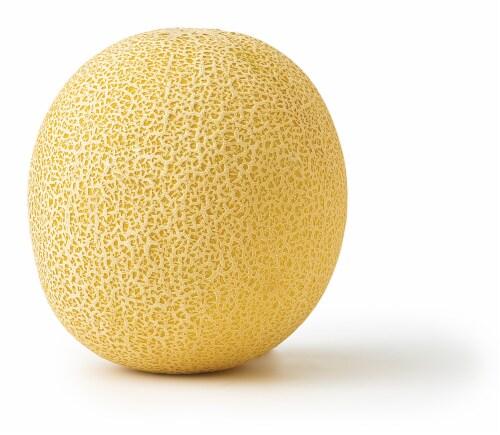Summer Kiss Melon Perspective: back