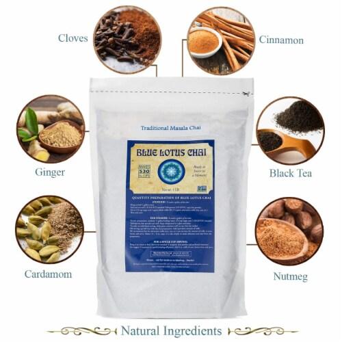 Blue Lotus Chai Traditional Masala Chai Powder, 1 Pound Bulk Bag, Makes 530 cups Perspective: back