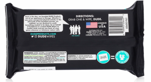 DUDE Wipes Mint Chill Flushable Wipes Perspective: back