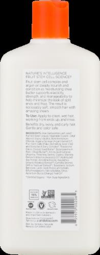 Andalou Naturals Argan Oil & Shea Conditioner Perspective: back