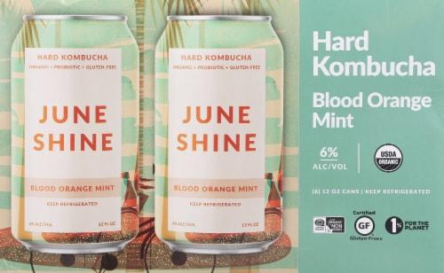 JuneShine Blood Orange Mint Hard Kombucha Perspective: back