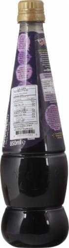 Ribena® Blackcurrant Drink Perspective: back