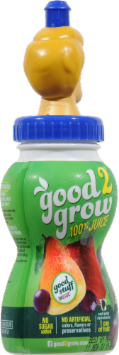 Good 2 Grow 100% Juice Fruit Punch Perspective: back
