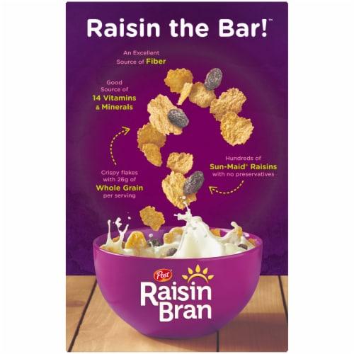 Raisin Bran Whole Grain Wheat & Bran Cereal Perspective: back