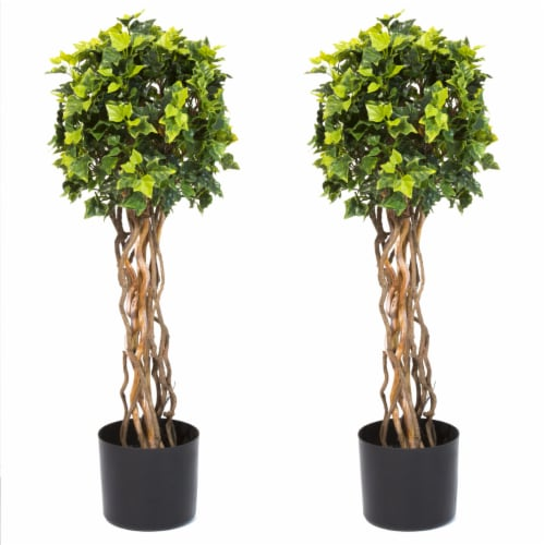 Pure Garden 30 Inch English Ivy Single Ball Topiary Tree - Set of 2 Perspective: back