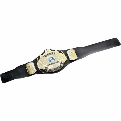 WWE Winged Eagle Championship Belt Perspective: back