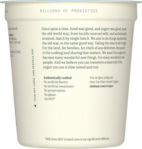 Chobani Original Plain Non-Fat Greek Yogurt Perspective: back
