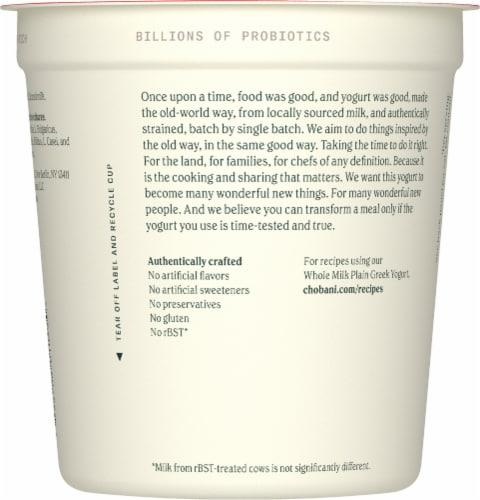Chobani® Whole Milk Plain Greek Yogurt Perspective: back