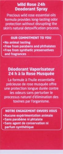 Weleda Wild Rose 24h Deodorant Spray Perspective: back