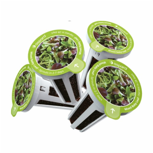 Aspara Mixed Baby Leaf Seed Capsule Kit Perspective: back