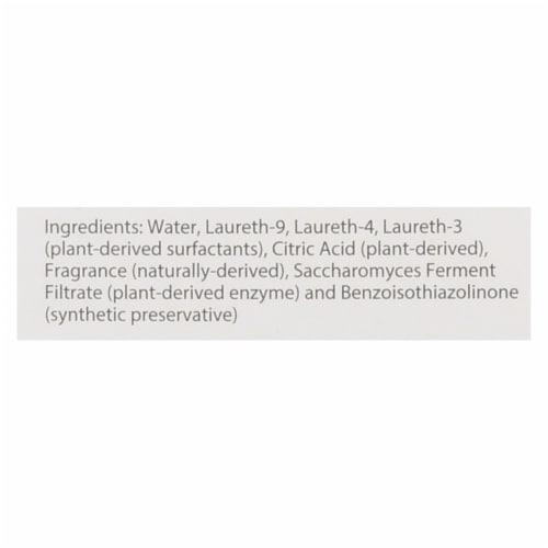 Air Scense - Spray and Go - Citrus - Case of 6 - 2 fl oz Perspective: back