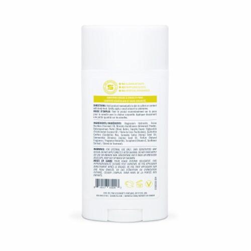 Schmidt's Patchouli & Hops Antiperspirant Deodorant Stick Perspective: back