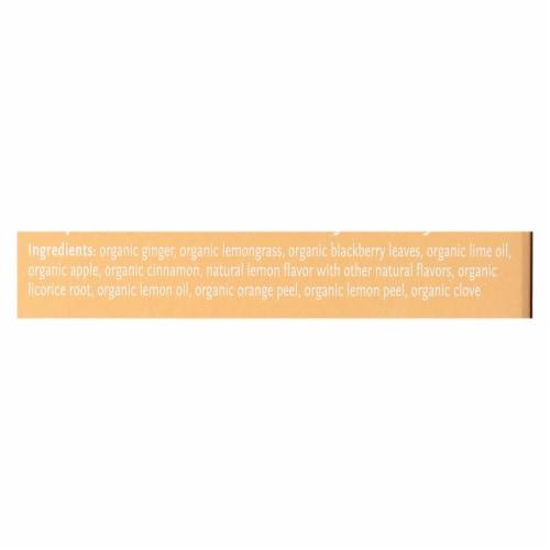 Steep By Bigelow Organic Herbal Tea - Lemon Ginger - Case of 6 - 20 BAGS Perspective: back