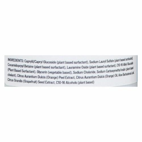 Biokleen - Dish Liquid Natural Citrus/aloe - Case of 6-32 FZ Perspective: back