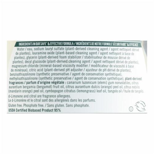 Seventh Generation - Dish Liquid Lemongrass Clementine - Case of 6-19 FZ Perspective: back