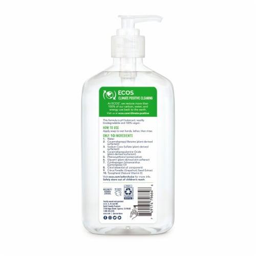 Earth Friendly Hand Soap - Lemongrass - Case of 6 - 17 FL oz. Perspective: back