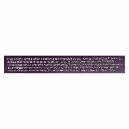 Better Life Natural Stain & Odor Eliminator, 16 Oz (Pack of 6) Perspective: back