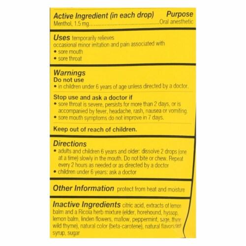 Ricola Herb Throat Drops Lemon Mint - 24 Drops - Case of 12 Perspective: back