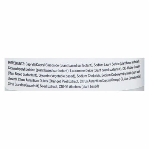 Biokleen Natural Dish Liquid - Case of 12 - 32 oz Perspective: back