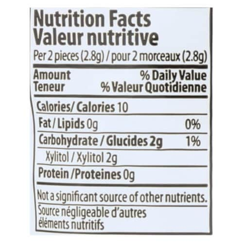 Pur Gum Sugar Free Gum - Chocolate Mint - Case of 12 - 77 GM Perspective: back