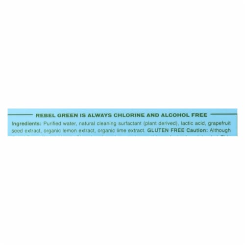 Rebel Green Cleaning Spray - Fruit and Veggie - Case of 12 - 17 fl oz Perspective: back