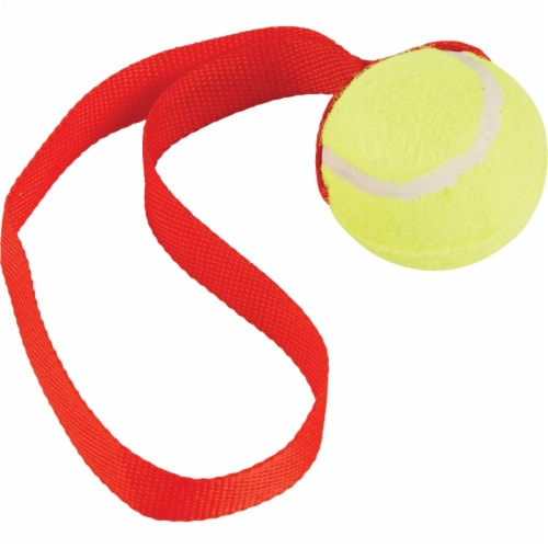 Smart Savers 6 Cm. Dia. Ball w/Tug Dog Toy CC401019 Pack of 12 Perspective: bottom