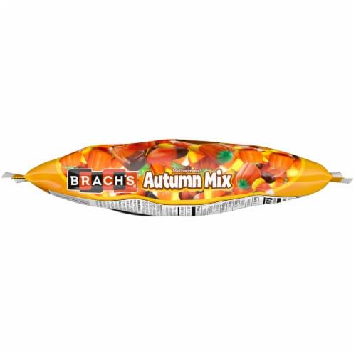 Brach's® Mellowcreme® Autumn Mix Candy Perspective: bottom