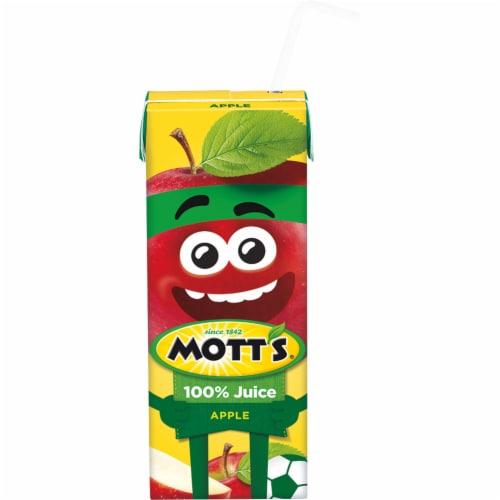 Mott's 100% Original Apple Juice Boxes 8 Count Perspective: bottom