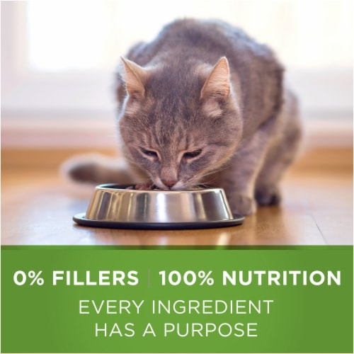 Purina ONE Indoor Advantage Hairball & Weight Control Natural Cat Food Perspective: bottom