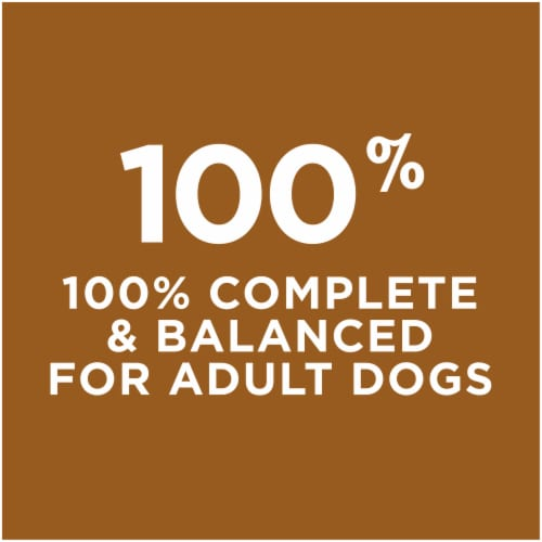 Dog Chow Little Bites Real Chicken & Beef Adult Dry Dog Food Perspective: bottom