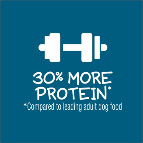 Puppy Chow® Healthy Start Nutrition Tender & Crunchy with Real Beef & Rice Dry Puppy Food Perspective: bottom