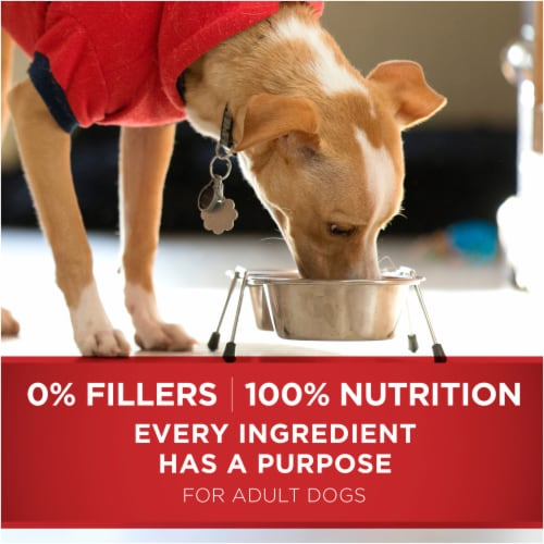 Purina ONE SmartBlend Small Bites Beef & Rice Formula Natural Dry Dog Food Perspective: bottom