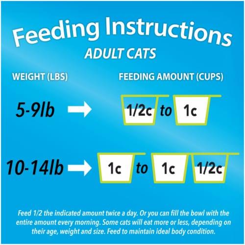 Kit & Kaboodle® Original Adult Dry Cat Food Perspective: bottom