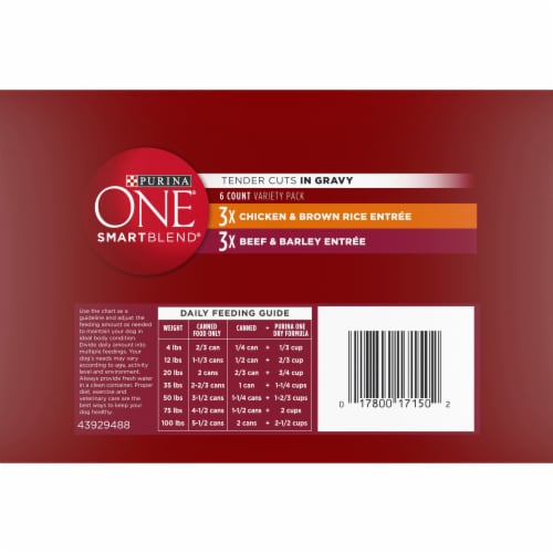 Purina ONE SmartBlend Tender Cuts in Gravy Wet Dog Food Variety Pack Perspective: bottom