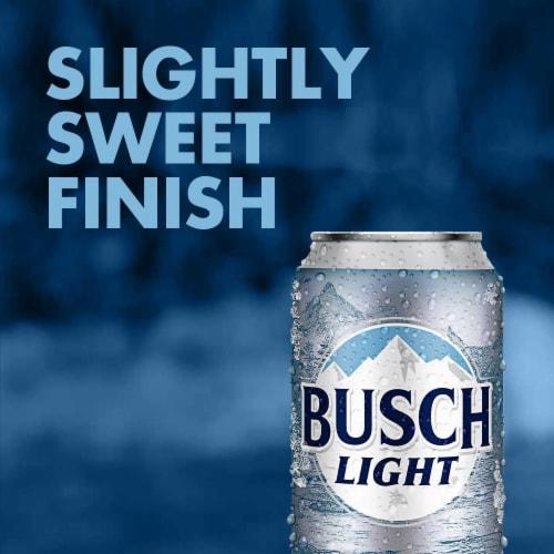 Busch® Light Lager Beer Perspective: bottom