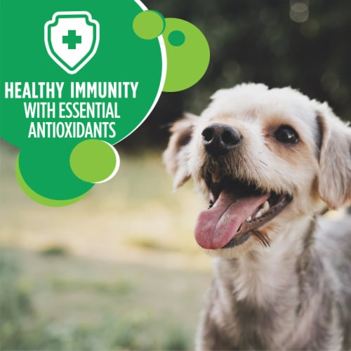 IAMS Protective Health with Chicken Small Breed Premium Dog Food Perspective: bottom
