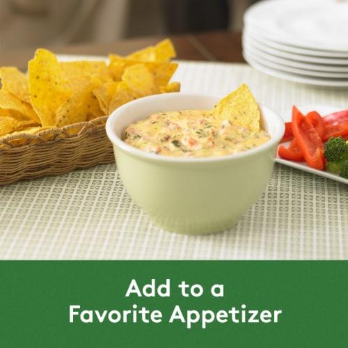 Philadelphia Dips Jalapeno Cheddar Cream Cheese Dip Perspective: bottom