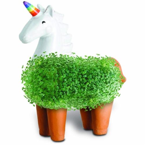Chia Pet Planter-Unicorn Perspective: bottom