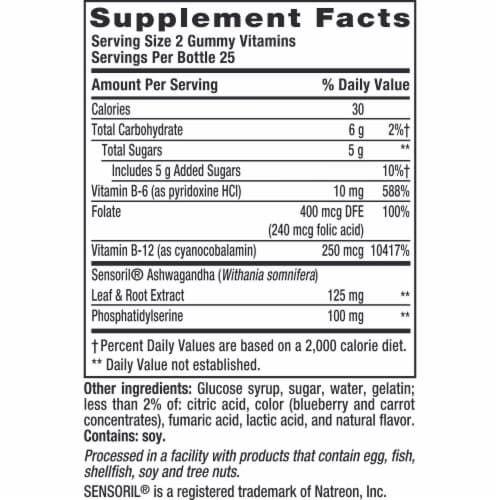 Vitafusion Natural Blueberry Flavor Brain Food Adult Gummy Vitamins Perspective: bottom