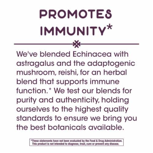Nature's Way Echinacea Astragalus & Reishi Dietary Supplement Vegan Capsules 1200mg Perspective: bottom