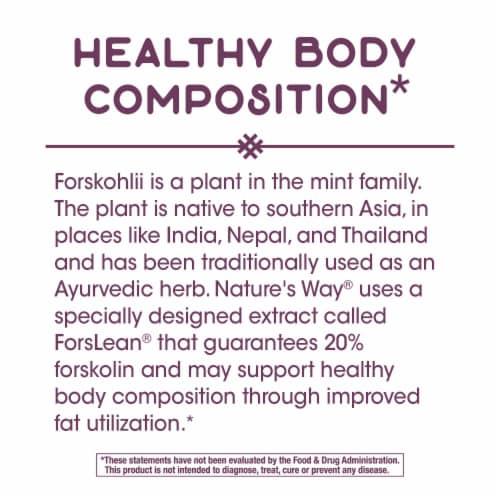 Nature's Way Forskohlii Dietary Supplement Vegan Capsules 125mg Perspective: bottom