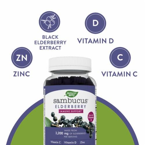 Nature's Way Sambucus Standardized Elderberry Gummies Perspective: bottom