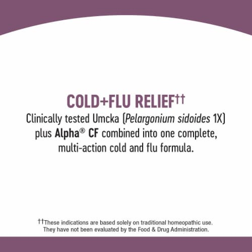 Nature's Way Umcka Cold & Flu Berry Flavor Chewable Tablets Perspective: bottom
