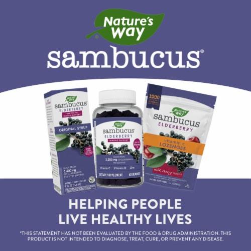 Nature's Way Sambucus Standardized Elderberry Original Dietary Supplement Syrup Perspective: bottom