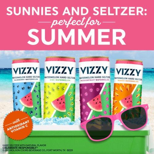 Vizzy™ Watermelon Hard Seltzer Perspective: bottom
