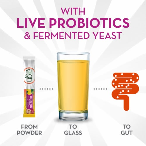 Align Kombucha On-the-Go Lemon Ginger Probiotic Drink Mix Perspective: bottom