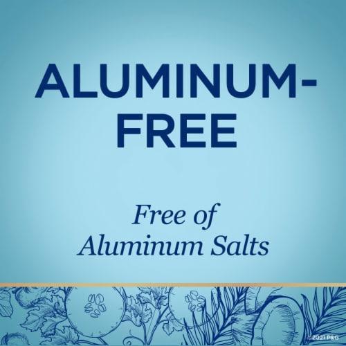 Secret Cotton Aluminum Free Deodorant for Women Perspective: bottom