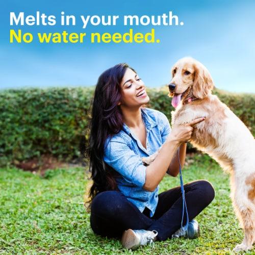 Claritin 24 Hour Non-Drowsy Indoor & Outdoor Allergy Relief Reditabs Perspective: bottom