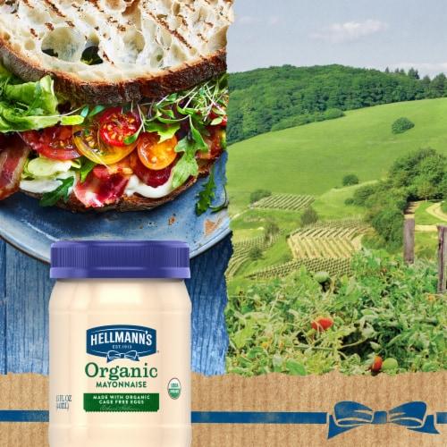 Hellmann's Organic Gluten Free Mayonnaise Perspective: bottom