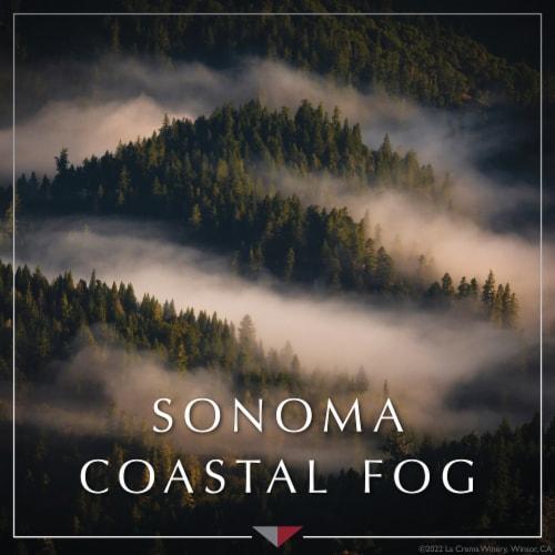 La Crema Sonoma Coast Chardonnay White Wine Perspective: bottom